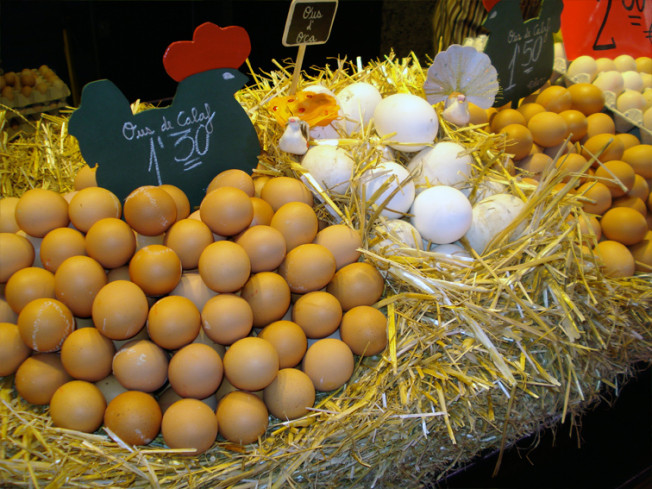 Santa Caterina Market - Eggs of all sorts